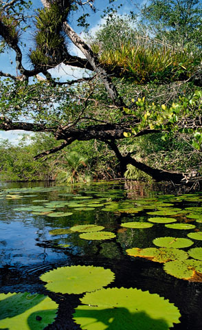 pic belize AC 020796