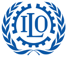 Certification of the fleet according to the Maritime Labor Convention (MLC)