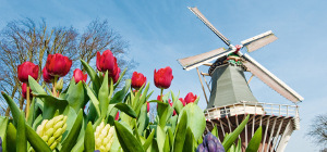 Windmühle in Amsterdam